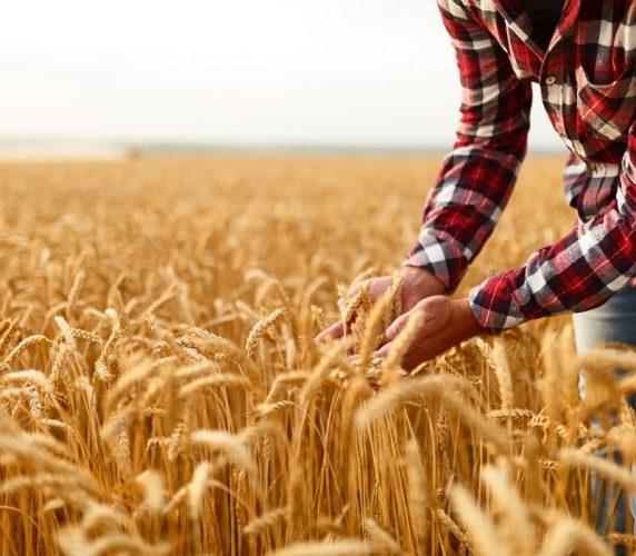 agriculteurs